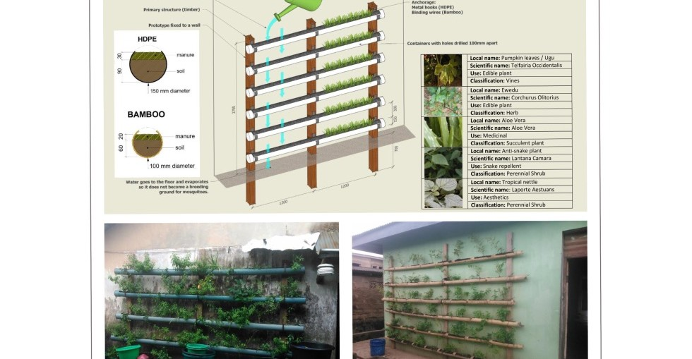 'Green walls' could bring cash and improve indoor comfort